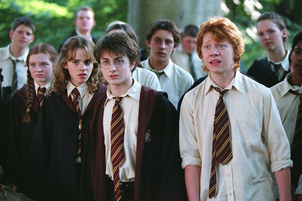 Harry Potter : un récit d'apprentissage